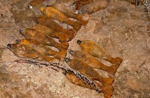 В Смоленске в садовом товариществе нашли мины и гранаты