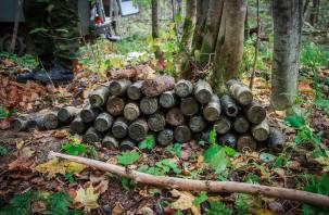 В Смоленске уничтожили найденные артиллерийские снаряды