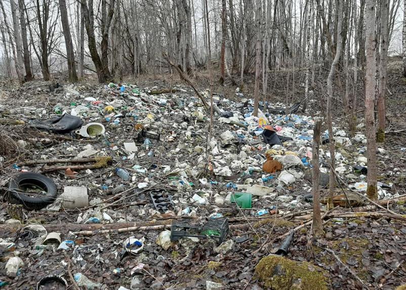Поселок Одинцово в Смоленске зарастает мусором. Кроме местных жителей до этого никому нет дела