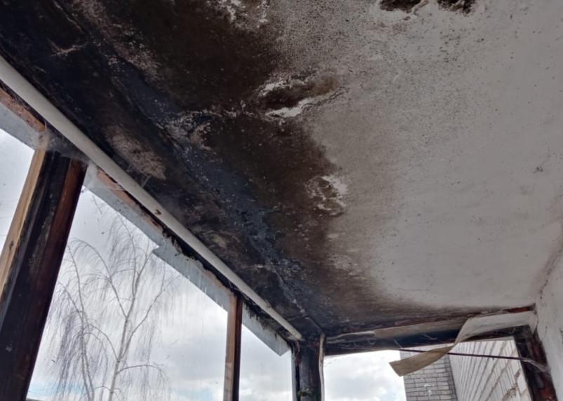 Смоленской художнице, которая вынуждена спать под пленкой, «Жилищник» ремонтирует крышу