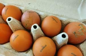 Помет, насечки, пух. В Смоленске эксперты забраковали все яйца