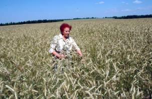 Памяти Почетного гражданина Смоленской области Валентины Комаровой