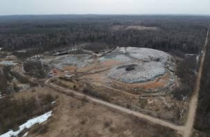 В Смоленской области принято решение не расширять мусорный полигон под Вязьмой