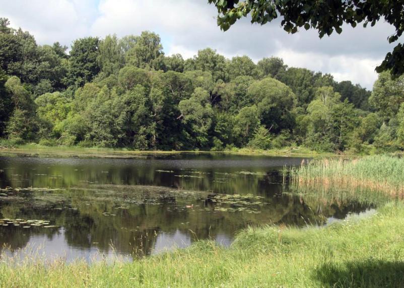 В Смоленске три озера подготовят к купальному сезону в этом году