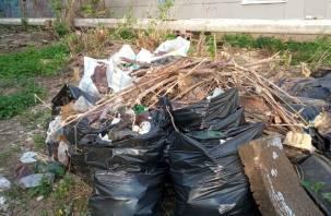 Город Смоленск погряз в мусоре и свалках
