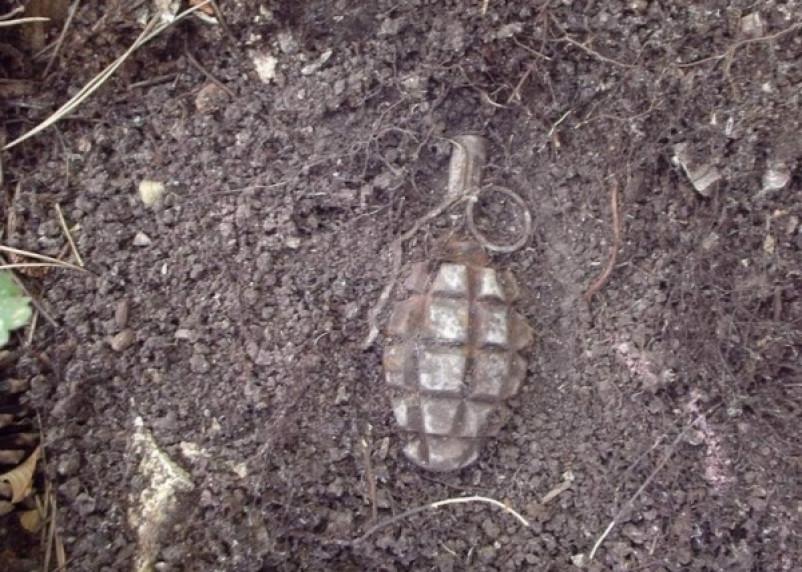 В смоленском дачном товариществе нашли гранату Ф-1