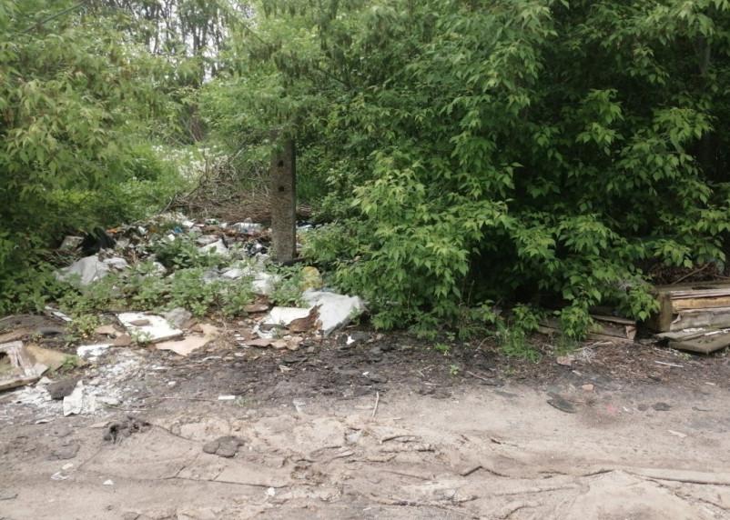 В Смоленске ликвидировали несанкционированную свалку мусора