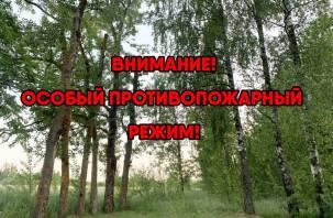 В Шумячском районе установили особый противопожарный режим