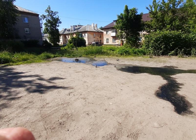 «Жуткая вонь». Два месяца из земли бьют ключи канализации в Смоленске