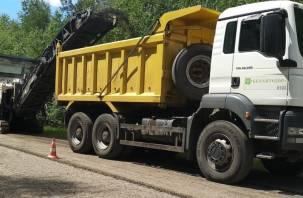 Впервые по нацпроекту начался ремонт дороги в Велижском районе