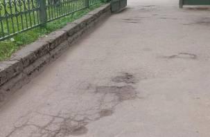 Смоляне жалуются на убитый асфальт в парке
