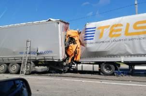 Стало известно о гибели водителя в утреннем ДТП на М-1