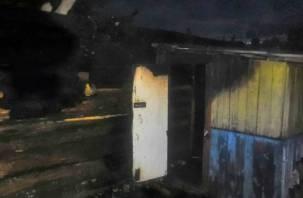 В Смоленском районе огонь повредил баню