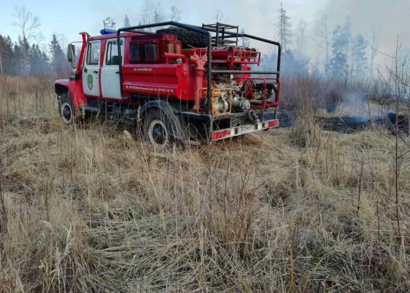 В Смоленской области зарегистрировали второй лесной пожар за сутки
