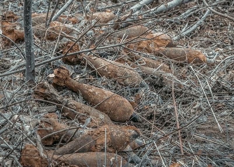 В Смоленской области обезвредили взрывоопасные предметы времен войны