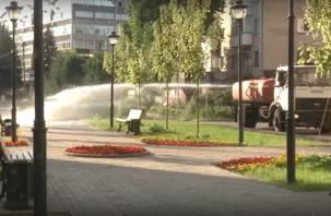 В Смоленске усилили полив зеленых насаждений