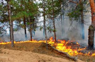 Подвержены пожарам. Как повлияют новые правила на жизнь рядовых смолян?