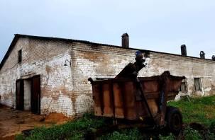 Из-за грозы в Гагаринском районе загорелась ферма с буренками