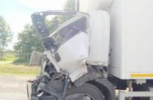 В Смоленской области в ДТП с трактором пострадал водитель фуры
