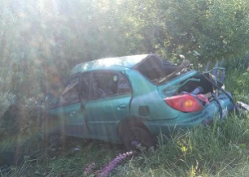 В Смоленской области иномарка протаранила дерево. Водитель попал в больницу