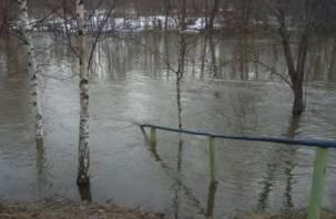 СК проверит обращение смолян Путину о затопленных дорогах
