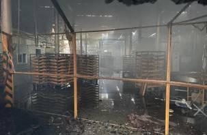 После пожара на хлебокомбинате в Смоленской области без работы остались 200 смолян