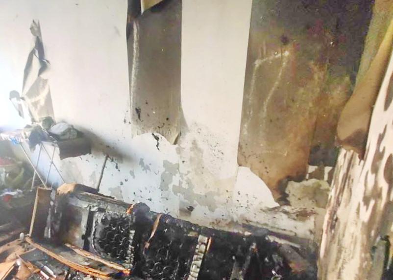 Пожарные спасли из огня собаку и котика в Смоленске