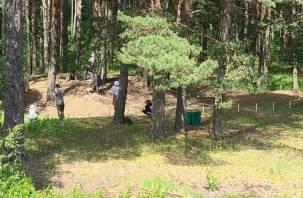 Гнёздовские клады: во время раскопок археологи обнаружили остатки ювелирной мастерской