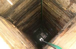 Один на всех и тот не годен. В деревне Хмельники Вяземского района единственный колодец с мутной водой