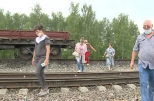 Смертельная дорога в школу. В смоленском селе дети вынуждены перебегать железнодорожные пути