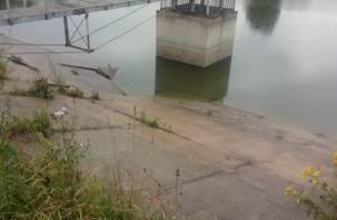 Без воды виноватые. В деревне Максимково Вяземского района обмелело озеро и пересыхают колодцы