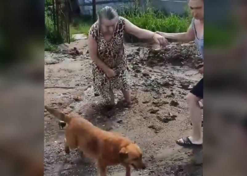 Концессия по-смоленски. После благоустройства территории жительница Ярцева застряла в грязи возле собственного дома