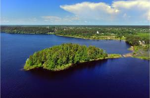 Исходный код национального парка. Можно ли быстро восстановить смоленский лес?