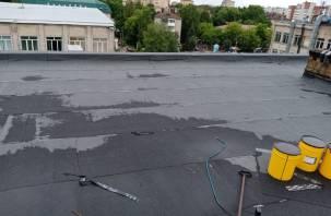 Смоленской художнице, которая спала под пленкой, отремонтировали крышу