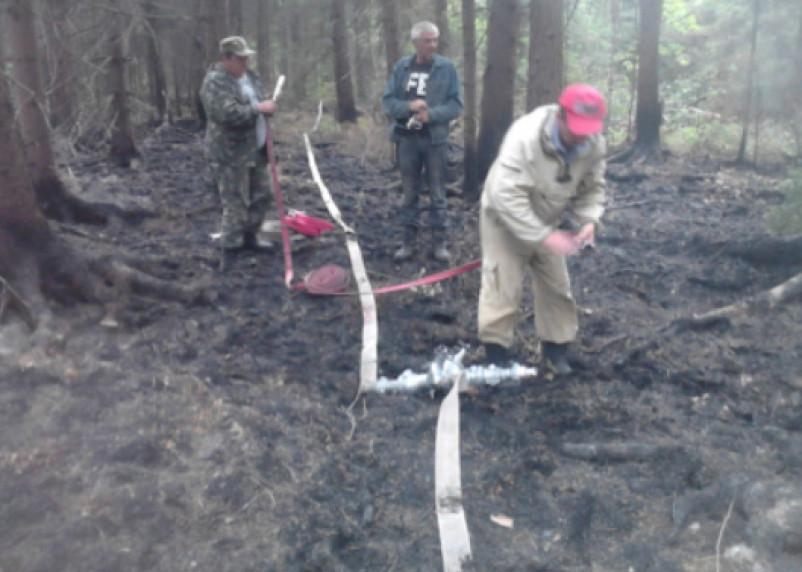 В Велижском районе тушили лесной пожар