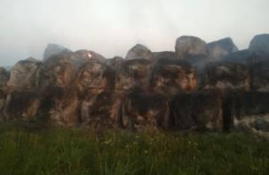 В Починковском районе сгорели 137 тонн сена