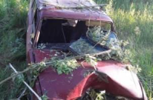 В Смоленском районе ВАЗ протаранил дерево