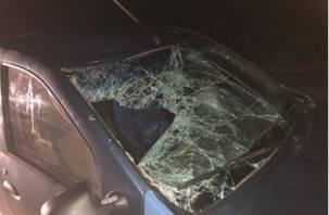 В Сафоновском районе иномарка сбила пешехода