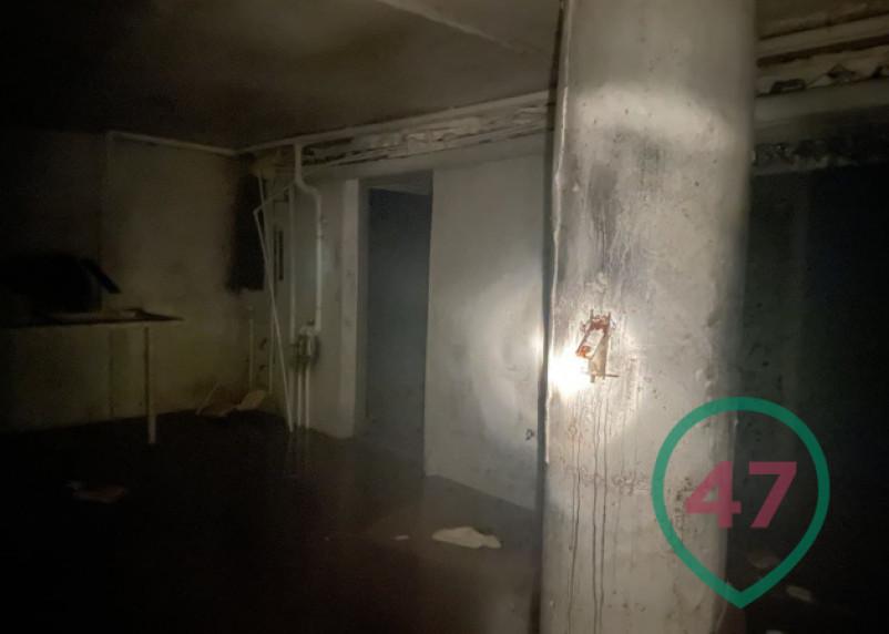 В Ленинградской области найдена частная подземная тюрьма с крематорием