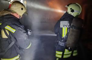 В Дорогобужском районе пожар обернулся трагедией