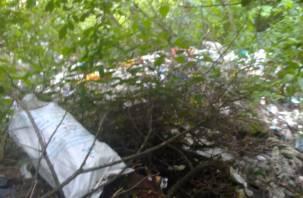 В Монастырщинском районе ликвидируют несанкционированную свалку мусора
