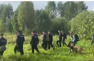 Следователи опубликовали видео поисков полуторагодовалой смолянки