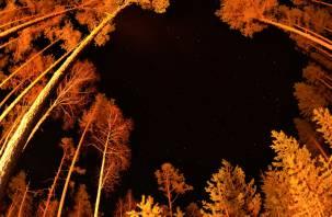 Звездопад желаний. Сегодня ночью в регионе можно увидеть мощный метеорный поток