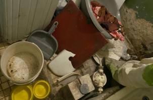 Бастрыкин взял на контроль проверку по инвалидам запертым без еды в квартире в Смоленске