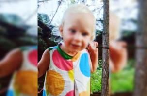 Пропавшая девочка найдена и жива. Поиски годовалой Люды Кузиной завершились успешно