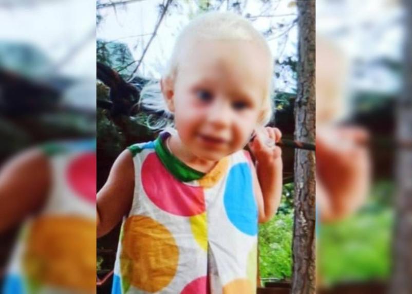 Найденную в темкинском лесу годовалую девочку перевели из реанимации