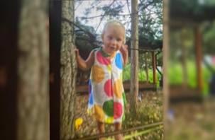 Смоленская прокуратура организовала проверку по факту исчезновения годовалой девочки