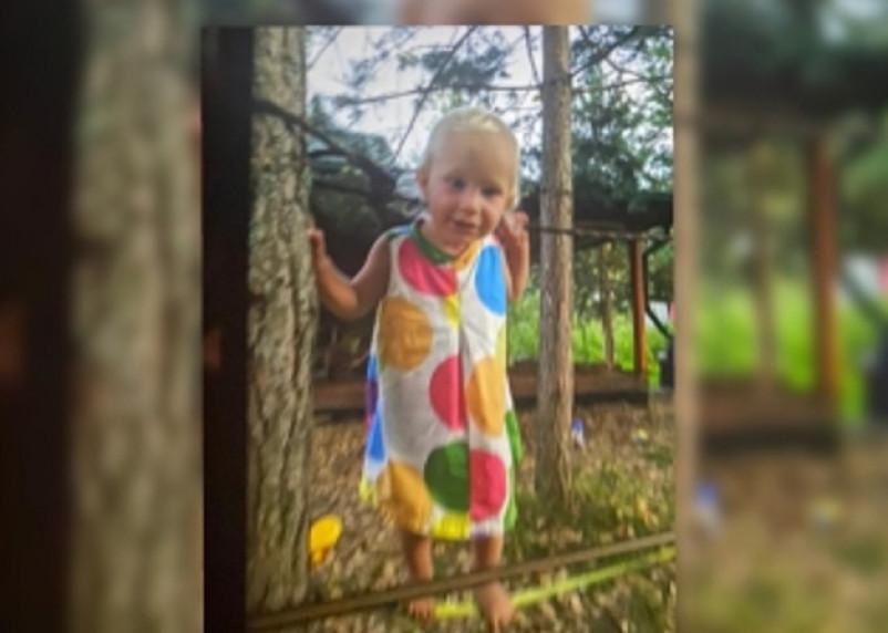 Возбуждено уголовное дело по факту безвестного исчезновения маленькой девочки в Темкинском районе