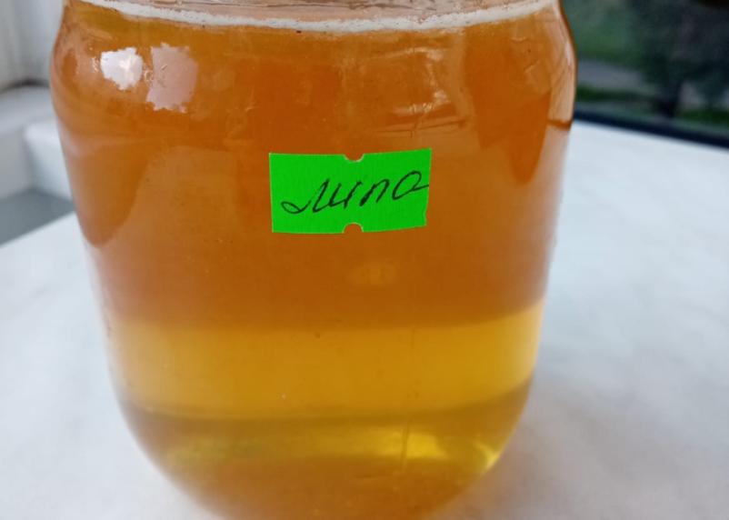 Медовый месяц. Как смолянам найти качественный мёд?