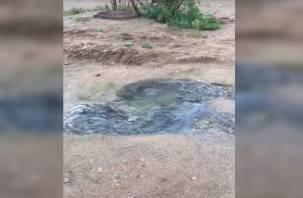 «Разбирайтесь сами». В деревне Киселевка под Смоленском бьют ключи канализации